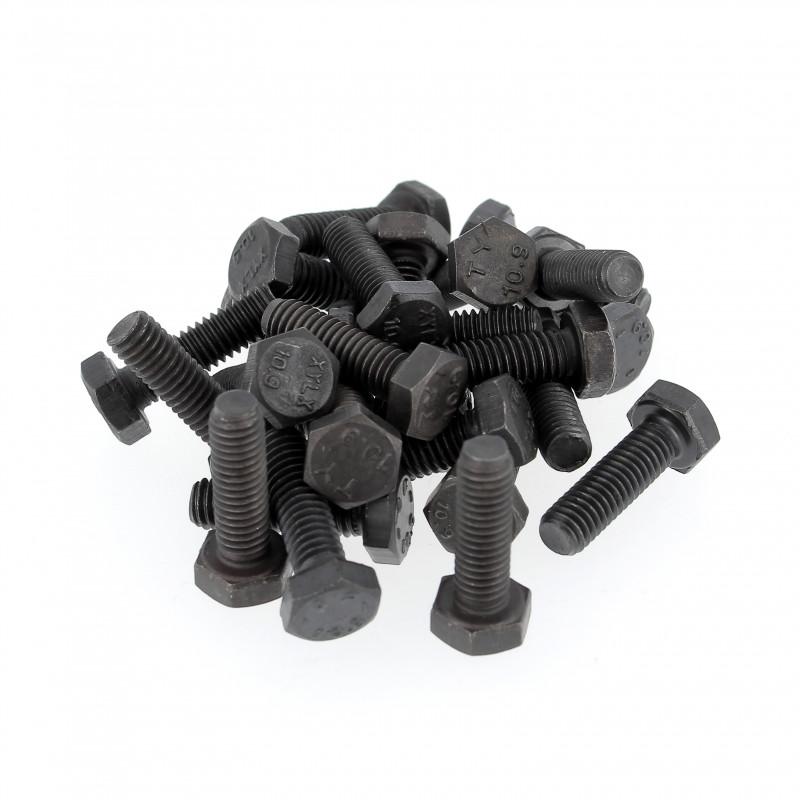 Sachet de 25 Vis à Tête Hexagonale Acier 10.9 Noir